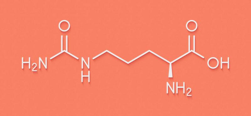 proteínas - aminoácidos